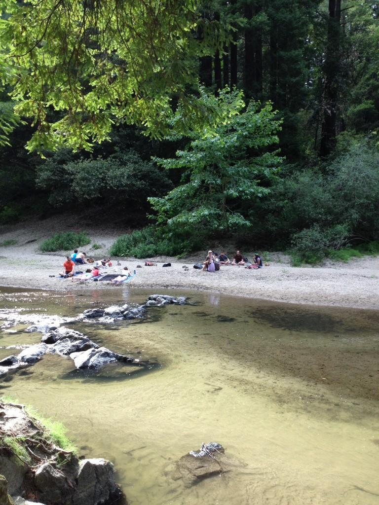 川遊びの楽しい季節です
