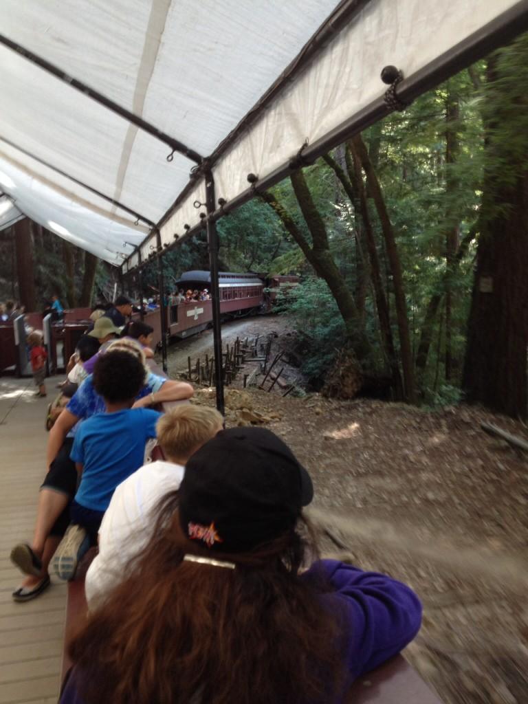 レッドウッドの森の電車の旅