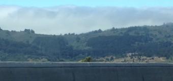 サンフランシスコの夏はとにかく寒い