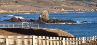 海を眺めながらクリスタルボウル演奏