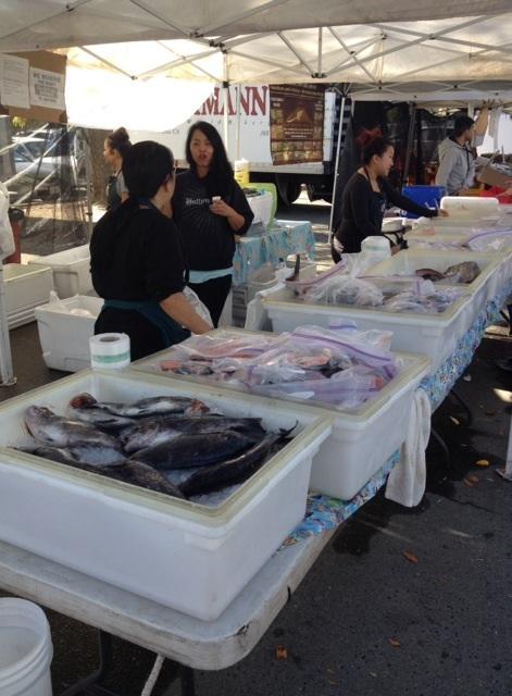 ファーマーズマーケットの魚