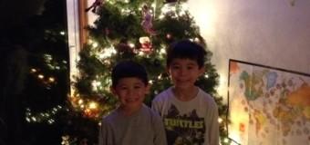 思い出がいっぱいのクリスマスツリー