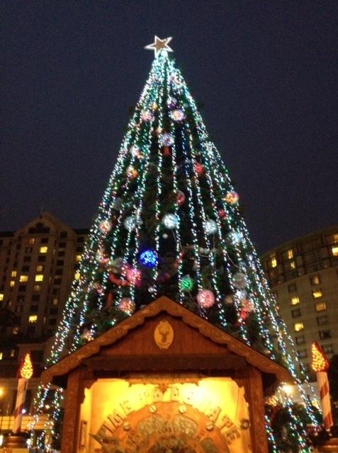 San Jose downtown Christmas