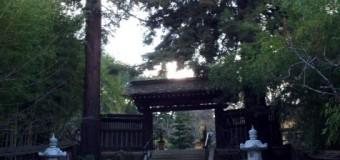 日本庭園 箱根ガーデン