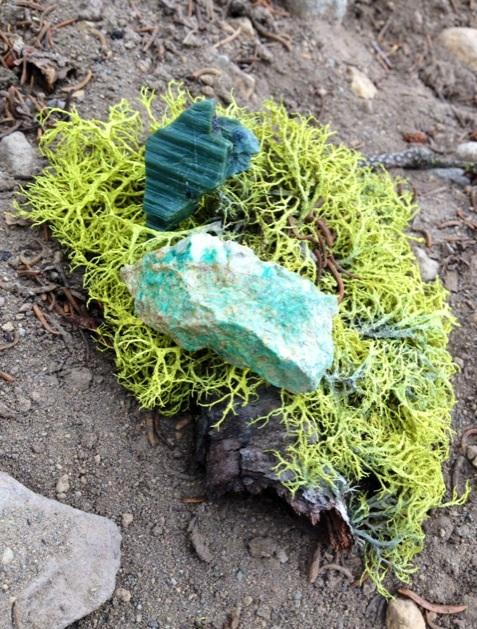 シャスタ山からやって来た石達