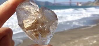 サンフランシスコのビーチでリラックスタイム