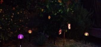 パーティー好きな妖精たち
