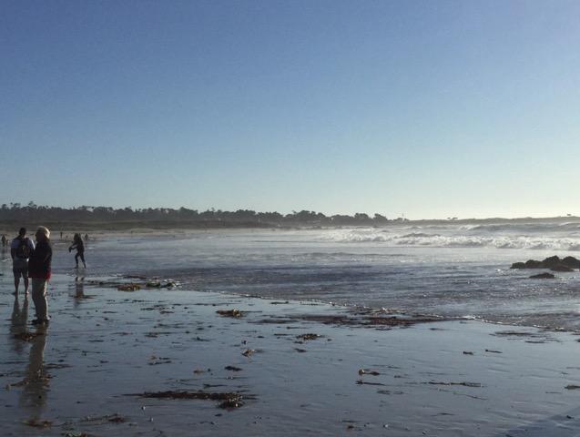海岸沿いのキャビン