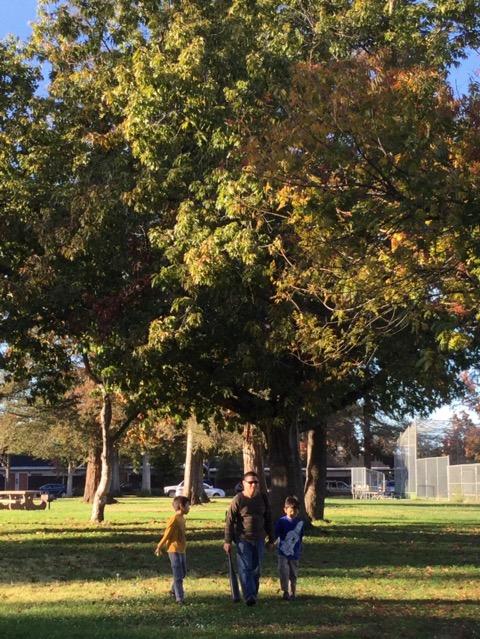 秋色に色つく公園