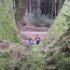 森の中でのスナックタイム
