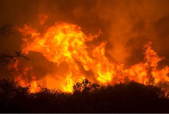 ナパバレーの大火事