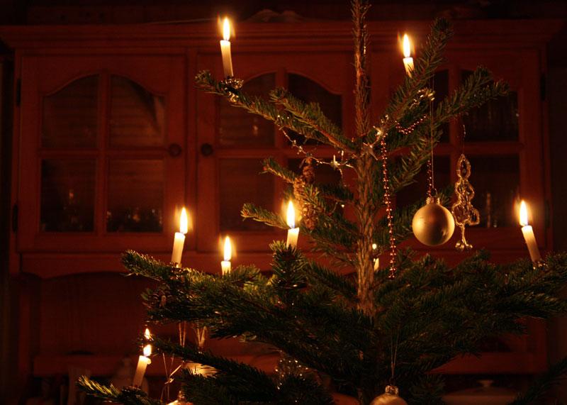 スイスのクリスマスツリー
