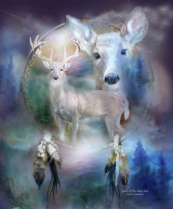 白色の鹿のエネルギー